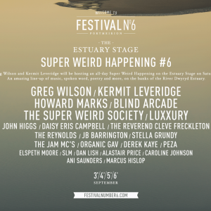 Festival N°6 Super Weird Happening